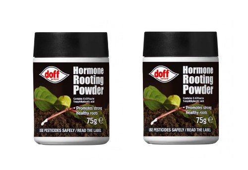 2-x-doff-hormone-rooting-powder-plant-cuttings-75g-dibber-packs