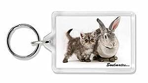 Kaninchen und Kitten 'Soulmates' Sentiment Foto Schlüsselbund TierstrumpffüllerG