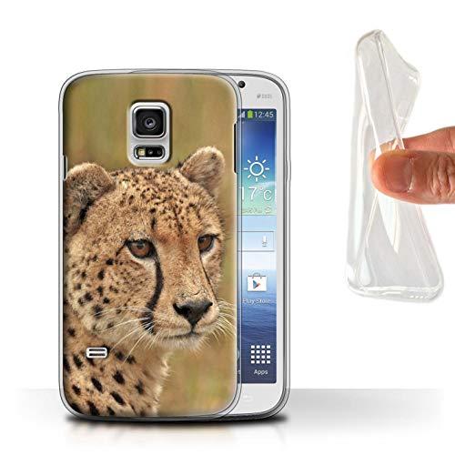 eSwish Gel TPU Hülle/Case für Samsung Galaxy S5 Mini/Gepard Muster/Wilde Große Katzen Kollektion -