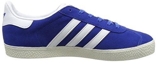adidas Jungen Gazelle Trainer Low Blau (Blue/ftwr White/gold Metallic)