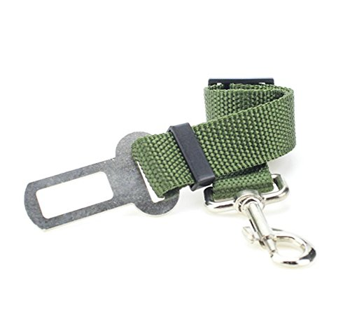 Da.Wa 1 Stück Nylon Einstellbare Auto Hunde Sicherheitsgurt Hundegurt Sicherheitsgeschirr,Grün,2.5×70cm