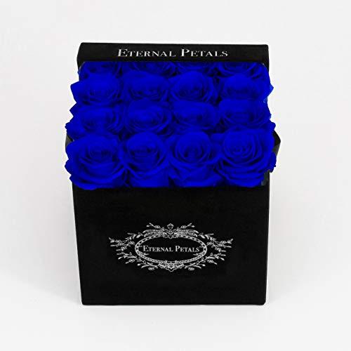 Authentische Pigment-pigment (Echte Rosen, die ein Jahr lang halten - perfektes einzigartiges Geschenk für Männer, Frauen. Geschenk für Jahrestag, Geburtstag, Babyparty, Königsblau, schwarze Samt-Geschenkbox)