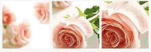 Wowdecor kit dipingere con i numeri per adulti bambini Junior principianti per anziani, dipinto di numeri set di 3pezzi Set–Beautiful Pink rose Flowers 16x 20x P cm Framed