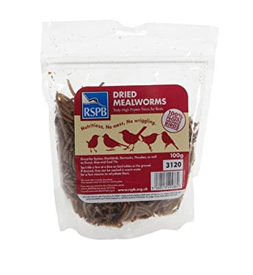RSPB 100g Dried Mealworms from RSPB Sales Ltd