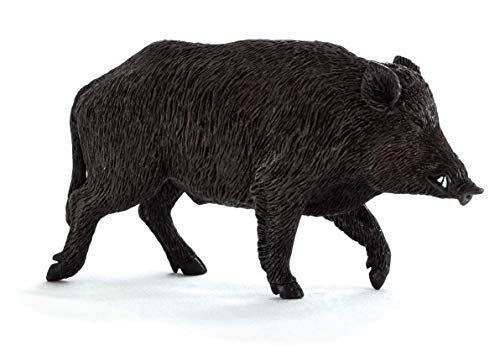 Science4you-Figur Wildschwein, Kunststoff, Größe M (30334.0) (Miniatur-kunststoff-schwein)