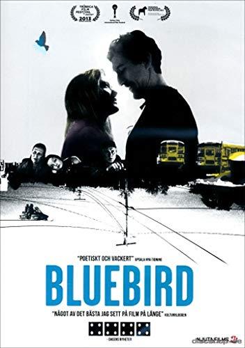 Bluebird ( ) [ Schwedische Import ]