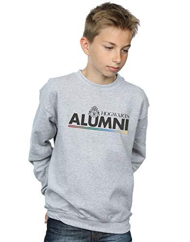 Harry Potter Jungen Hogwarts Alumni Sweatshirt Sport Grau 7-8 Years