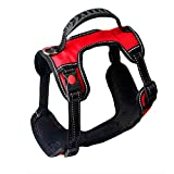 XDYFF No-Pull Hundegeschirr mit Tragegriff für Hunde Pet-Zug am vorderen und hinteren Ring hinteres Herzband mit leichtem Gurt und Sicherheitsgurt mit Verschlussschnalle,Red,S