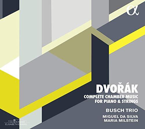 Dvorak: Die Kammermusik Für Klavier und Streicher