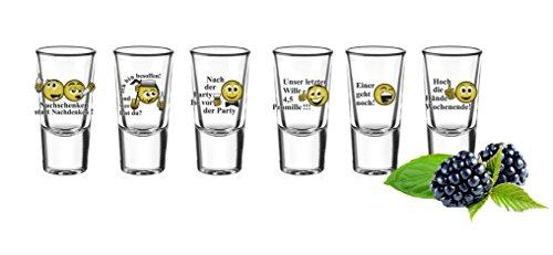 6 Schnapsgläser Tequilagläser mit Sprüchen Gläser Schnaps Shots Stamper Wodkagläser