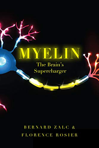 Myelin: The Brain's Supercharger (English Edition)