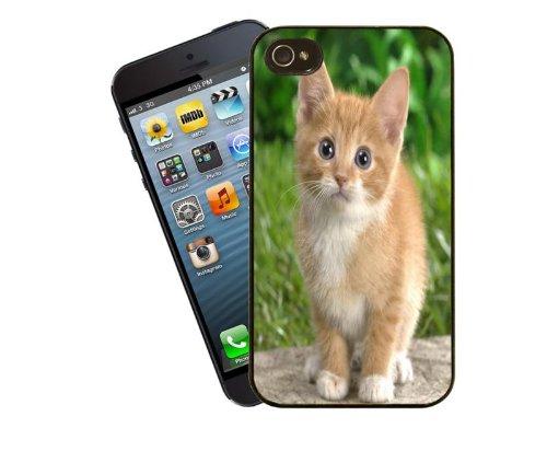 Design 12–Ingwer und weißes Kätzchen–für Apple iPhone 5/5S–Cover von Eclipse Geschenk Ideen ()