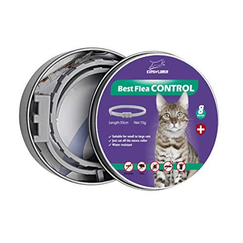 EXPAWLORER Katzenhalsband gegen Flöhe und Zecken, für 8 Monate, Beste Flohbekämpfung für Kätzchen, 33 cm