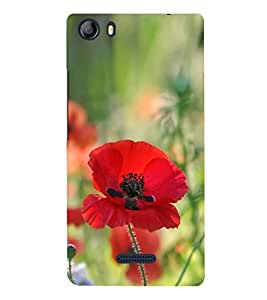Red Flower 3D Hard Polycarbonate Designer Back Case Cover for Micromax Canvas 5 E481