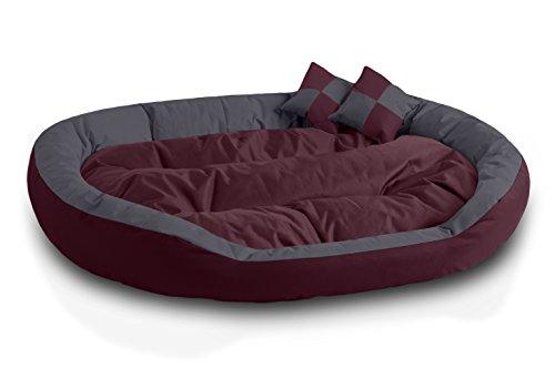 BedDog 4in1 Hundebett SABA/Wende-Hunde-Kissen oval-rund/großes Hundekörbchen/abwischbares Hundebett mit Rand/für drinnen & draußen/XXXL/Cherry-Rock/Bordeaux-grau