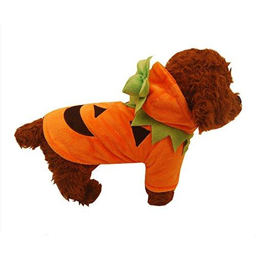 Kürbis Cool Süßer Hund Pet Cosplay Kostüm Kleidung ()