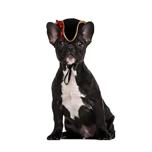 Pet Piraten Kostüm - Wankd Halloween Katze Pirat Hat Pet Wizard mit Kopfbedeckungen Katzen & Kleine Hunde Party Kostüm Einheitsgröße