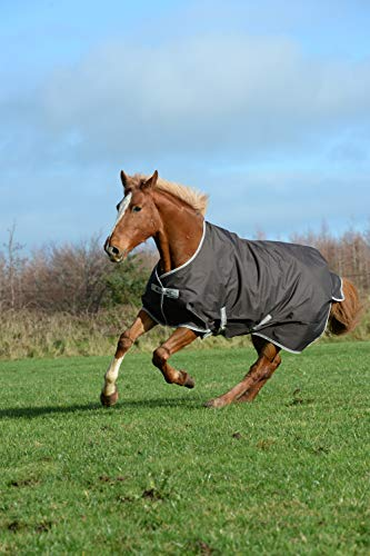 Bucas Freedom Turnout Pony 300g - Coffe