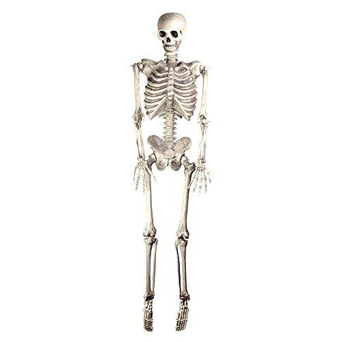 Bristol Novelty hi301Skelett zum Aufhängen, Weiß/Grau, One size (Grim Reaper Prop)