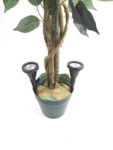 2 x LED Pflanzenstrahler Jasmin im Set Blumenstrahler mit Handschalter Zimmerpflanzenleuchte...