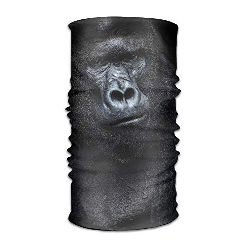 jiilwkie Portrait of A Gorilla In A Black Background Fashionable Outdoor Hundred Change Headscarf Original Multifunctional Headwear | 06254239473805