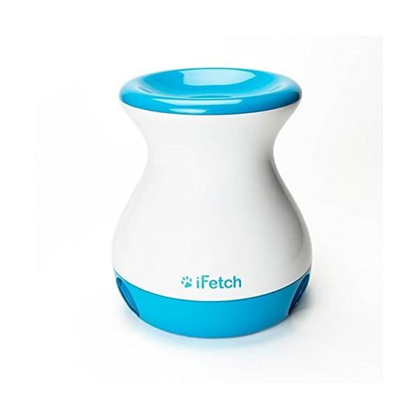 iFetch Frenzy, Mini 1