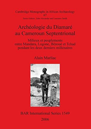 Archeologie Du Diamare Au Cameroun Septentrional