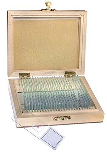 TS-Optics 25 Stück verschiedene Dauerpräparate Objektträger Deckgläser für Mikroskope in Holzbox mit deutscher Beschriftung. Tsmdpo