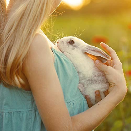 Ida Plus – Kräuter-Blüten Mix 3,5 kg – Abwechslungsreicher Futter-Mix für Nager: Kaninchen, Zwergkaninchen, Hamster, Meerschweinchen, Chinchillas usw. – mit Karotte & Luzerne + Vitamin C - 4