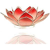 Trimontium tl12013s Photophore en Forme de dreiblättrigen Diamètre env. 14 cm, Capiz Coque Lotus, Objet, Bicolore Rouge…