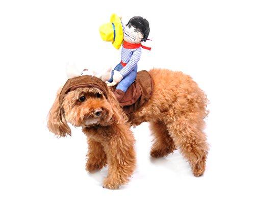 Kostüm Spaß Kostenlose - DSstyles Haustier Kostüm Reiter mit Stier Mütze für Kleine Hunde oder Katze - Größe M