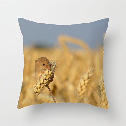 yinggouen-eating-beans-decorate-for-a-sofa-pillow-cover-cushion-45x45cm