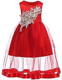 YuanDian Bambina Sposa Damigella Vestiti Da Cerimonia Fiore Ricamo Tulle  Doppio Strato Carnevale Festa Abiti Bambini 4a78104d1ca