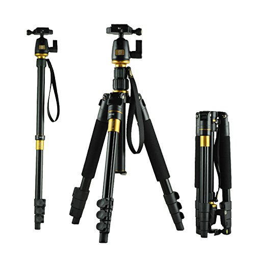 mondpalast-professionale-luce-portatile-del-peso-di-magnesio-alluminio-treppiedi-monopiede-q-555-bk-