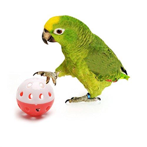 sunhoyu - Juguete para Loros y Loros de Mascotas, Juguete de pájaro Hueco, Bola para paracaídas, periquitos de NINFA, Masticar Divertido, Jaula
