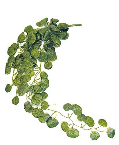 Namiba Terra 5926 Hängepflanze, Großblättrige Begonie, Seide, circa 85-90 cm, grün/gelb geadert