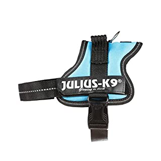 Julius-K9 162AM-M K9 PowerHarness for Dogs, Size Mini, Aquamarine