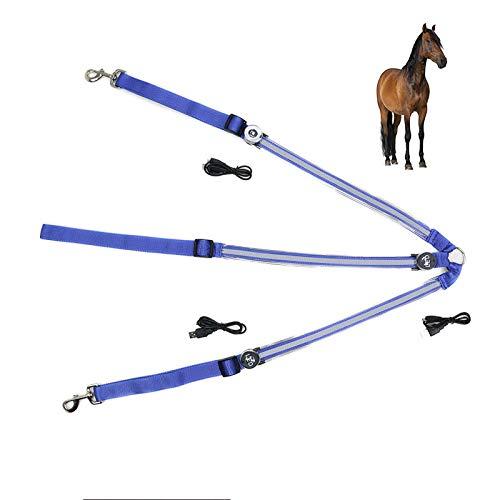 UTOPIAY LED-Brustgurt für Pferde/USB aufladbar LED-Pferdegeschirr, Beste Sichtbarkeit beim Reiten, verstellbare, robuste und komfortable Sicherheitsausrüstung für EIN sichtbares Pferd,Blue