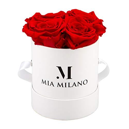 Mia Milano Rosenbox mit Infinity Rosen (Geschenk zum Weltfrauentag) Flowerbox mit konservierten Blumen l 3 Jahre haltbar