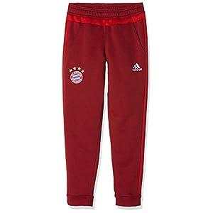 adidas Jungen Hose FC Bayern München Sweat