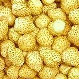 Semillas de maravilla amarilla de fresa salvaje - Fragaria vesca