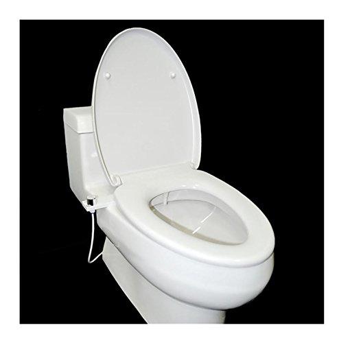 Modern bidet, WC bidet, koud water bidet, hoge kwaliteit, zelfreinigende nozzle