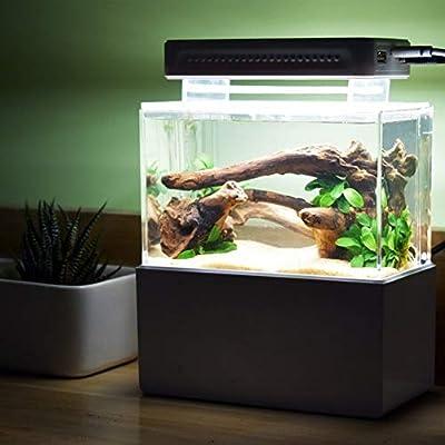 ZANGAO Mini Fish Tank Bleu Clair LED Bleu Cylindre dédié LED Bleu Corail Lumières Aquarium Accessoires for Mini Fish Tank