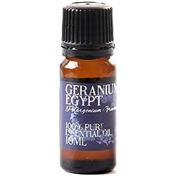 Geranio Egipto Aceite Esencial - 10ml - 100% Puro