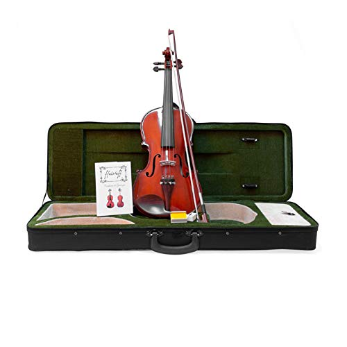 Violino 4/4'Accademy' con Top in Massello, Parti in Palissandro, Custodia Rettangolare e Accessori
