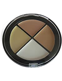 Zarup- 4 colores Maquillaje para la cara Powder Palette Corrector Powder Foundation Powder