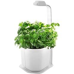 Tregren Genie blanc 3 plantes, mini Jardinière et Potager d'intérieur Autonome pour herbes aromatiques, petits légumes, fleurs - Kit prêt à pousser avec arrosage automatique - Blanc