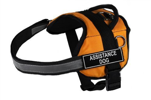 Dean & Tyler DT Works Assistance Dog Dog Harness, Fits Girth Size 21-Inch to 26-Inch, X-Small, Orange/Black 1