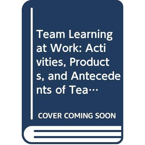Team Learning at Work: Activities, Products, and Antecedents of Team Learning in Organizational Complex Decision-Making Teams