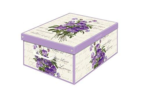 Kanguru 661 VI Boîte de Rangement Collection MIDI parfumée Violet, Plastique, 42 x 32 x 17,5 cm